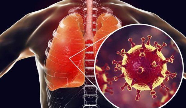 طرق انتقال فيروس كورونا